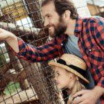 Zoo de Americana: uma ótima opção para visitar na região de Sumaré